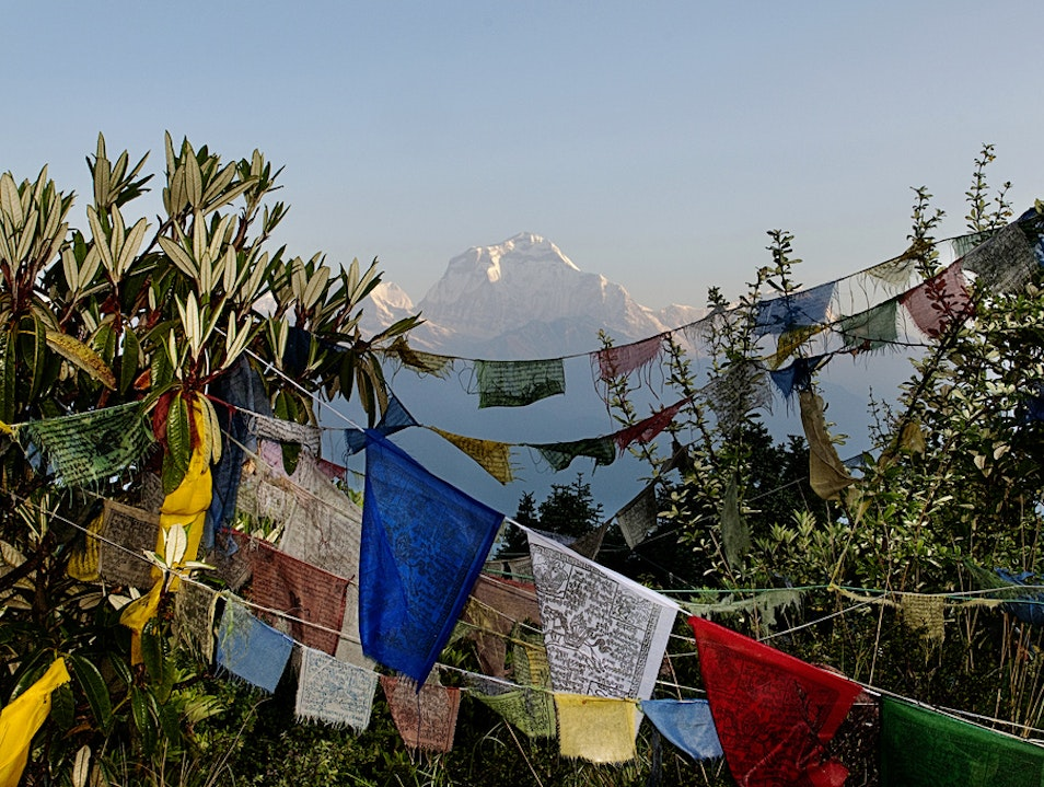 Forget Everest Base Camp, Trek Through the Jungle Ghode Pani  Nepal
