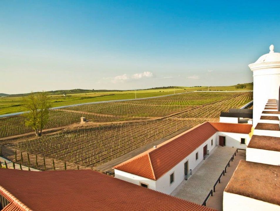 Alentejo's Hidden Wine Treasure Monforte  Portugal