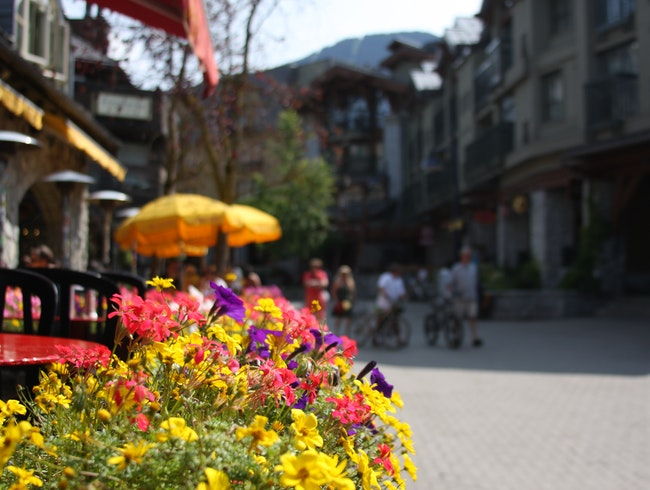 Whistler: Not Just A Ski Resort