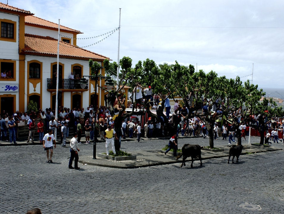 Pamplona 200 days a year, only on Terceira Island