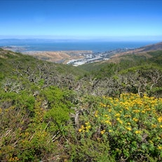 San Bruno Mountain Ridge Trail