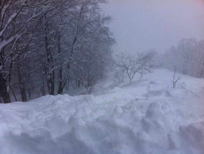 Powder skiing in Hakuba