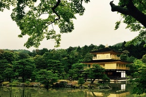 The Best Japanese Gardens, Temples and Shrines