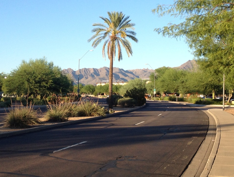 Hot And Dry Scottsdale