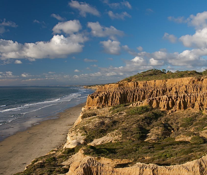 The Torrey Pines hiking trail follows the coast and overlooks the beach.