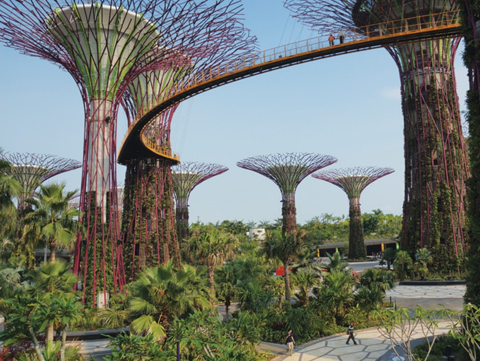 Gardens by the Bay| Singapore | AFAR