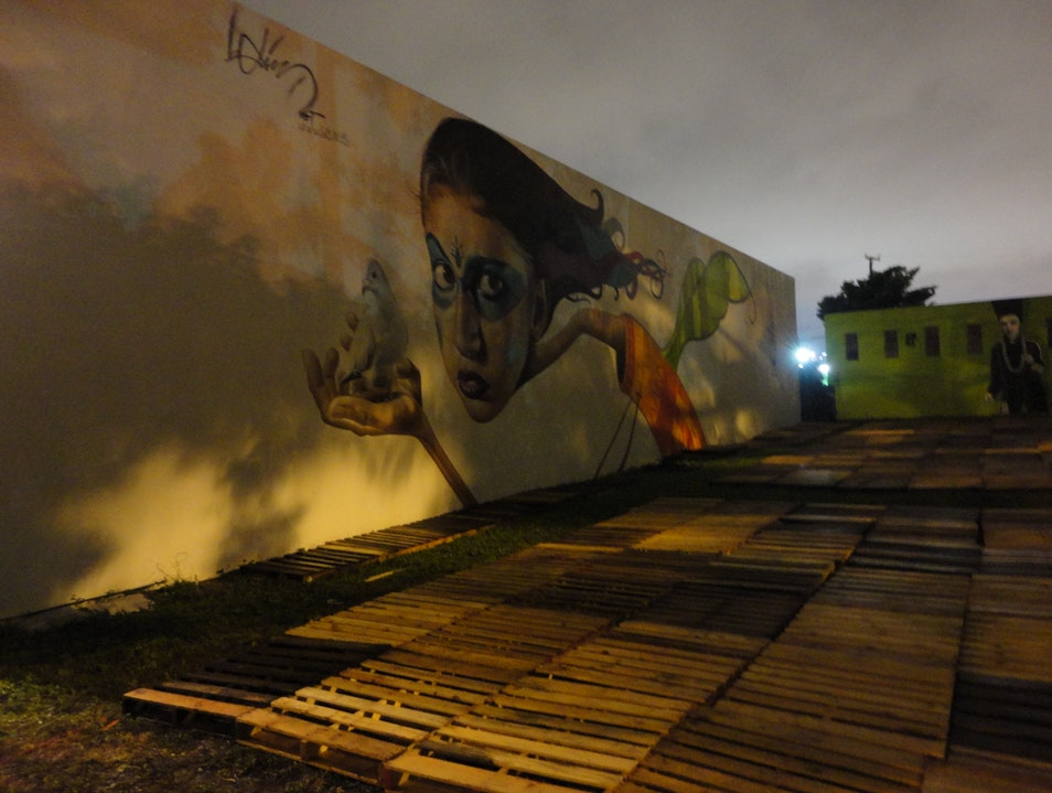 Wynwood Art Walk Miami Florida United States