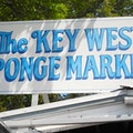 Key West Sponge Market Shop Key West Florida United States