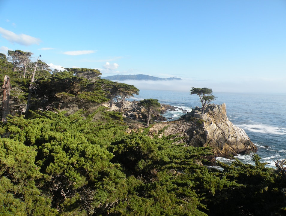 Don't drive....bicycle 17 Mile Drive in Carmel California