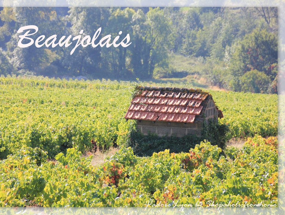 For the best wine experience, visit Beaujolais