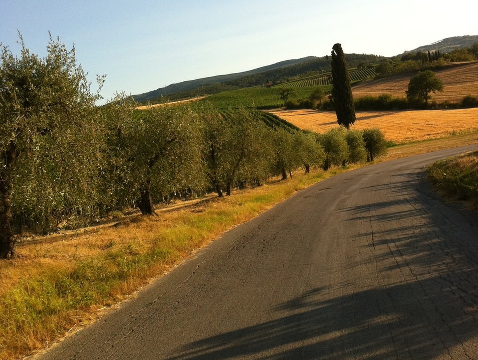 ... simply driving around Montepulciano Montepulciano  Italy