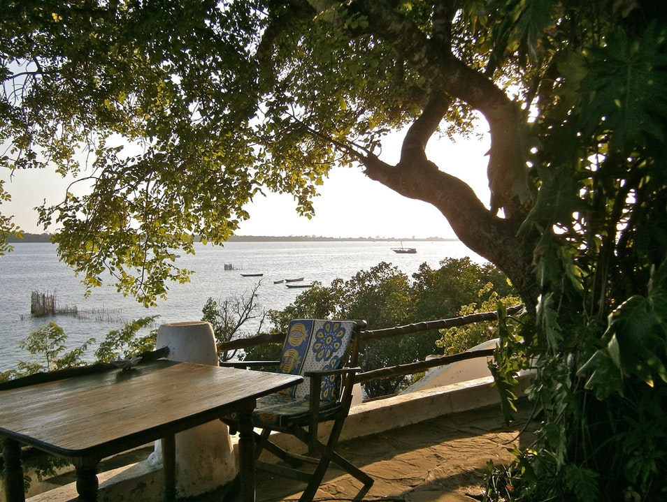 Slowing down in Shimoni