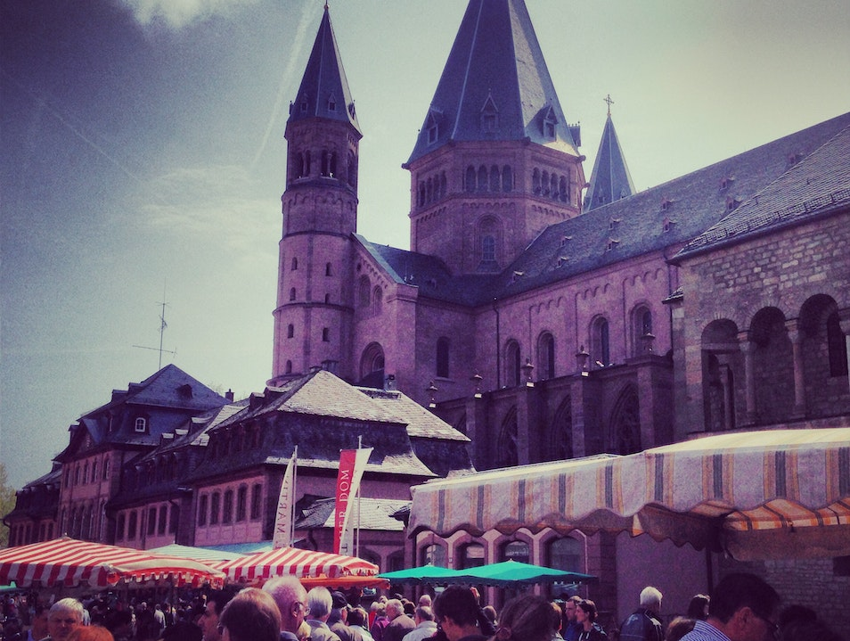 In the Market for Fresh Produce in Mainz Mainz  Germany