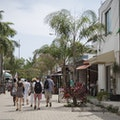 5th Avenue  Playa Del Carmen  Mexico