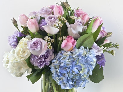Monday Morning Flower and Balloon Co Princeton New Jersey United States