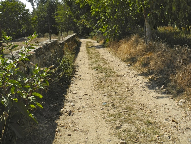The Old Road to the River