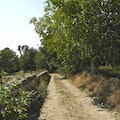 The Old Road to the  Fields Along the River Vila Verde da Raia  Portugal