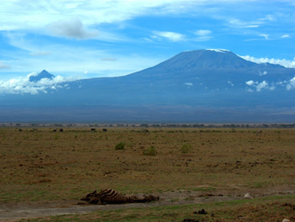 Views of Africa's Highest Peak Amboseli National Park  Kenya