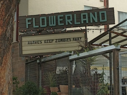 Flowerland Nursery Berkeley California United States