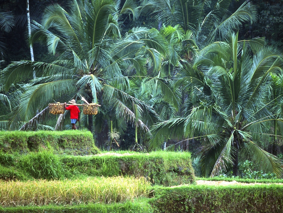 Discover the Remote Wonders of Bali