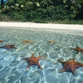 Starfish Bay Trujillo  Honduras