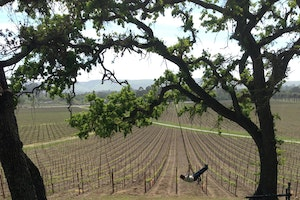 The Best of Sonoma County