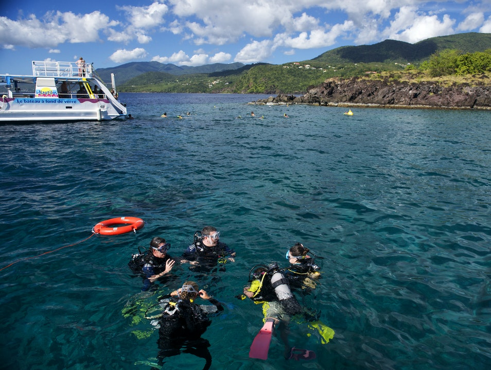 Dive Into the Cousteau Reserve Bouillante  Guadeloupe