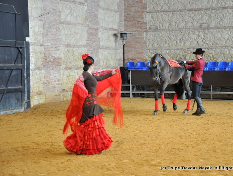 Watch horses dance flamenco in Andalusia