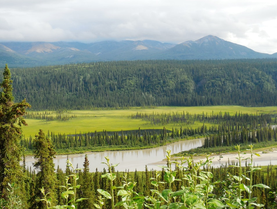 Driving along the Denali Highway Denali National Park and Preserve Alaska United States
