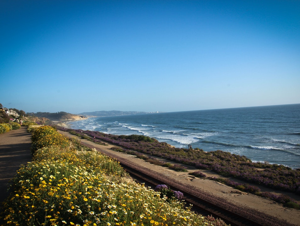 Walk the Bluffs and the Beach in Del Mar!
