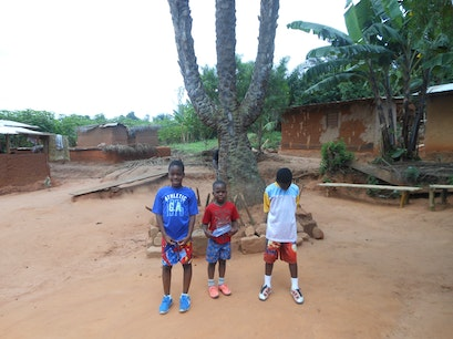 Boti Falls - The triplet palm tree Koforidua  Ghana