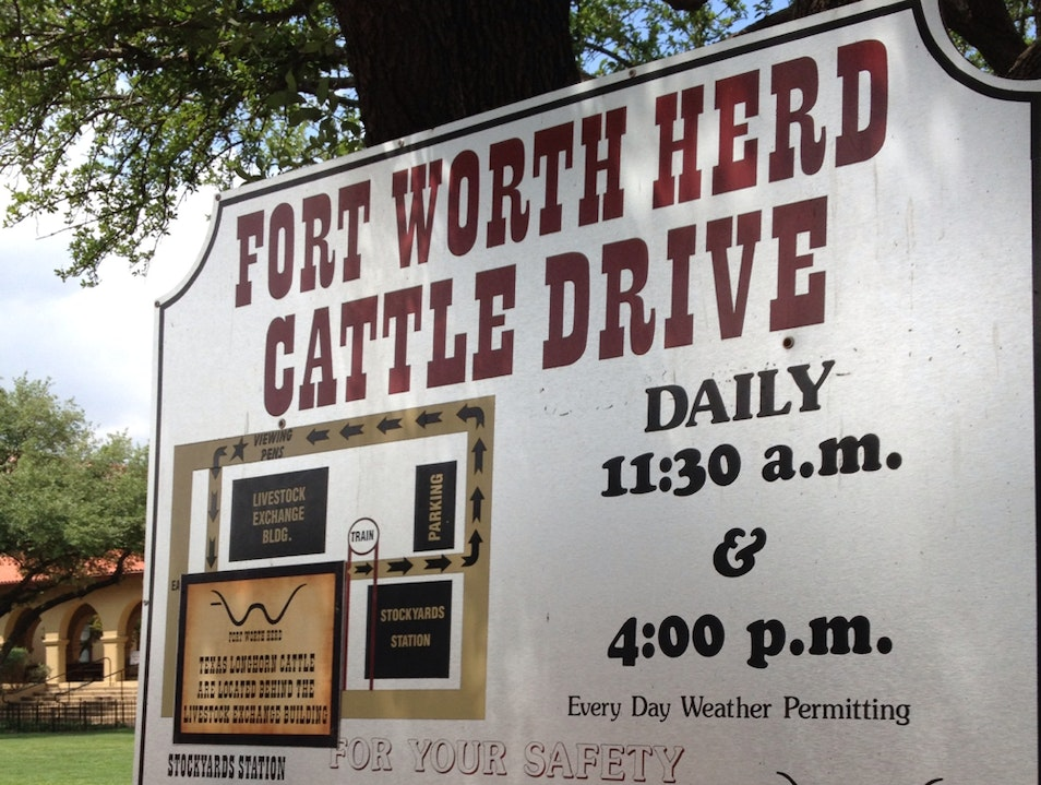 Ft. Worth Cattle Drive