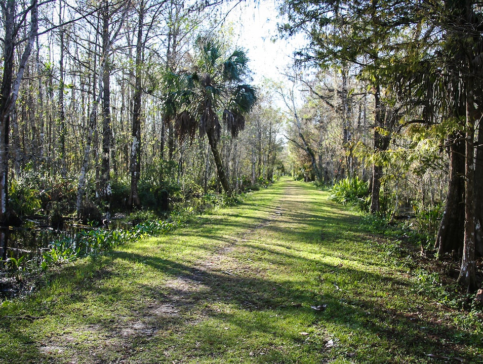 Perfect Nature Day Hike in Naples