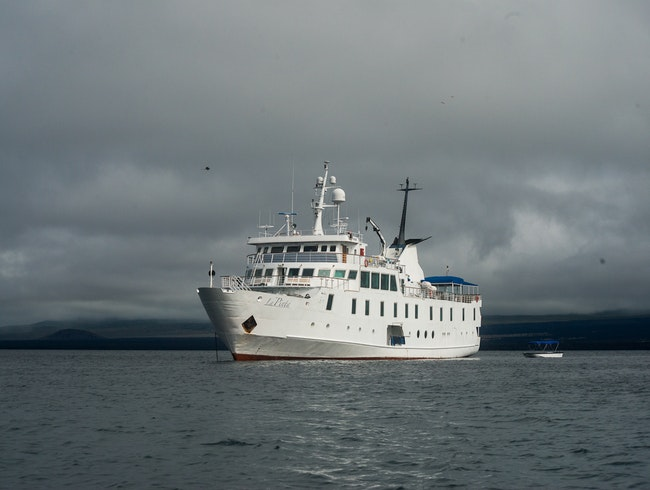 Cruise the Galapagos
