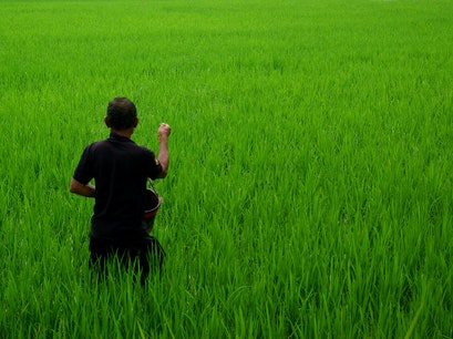 Deta Junjungan Rice Field Villa Ubud  Indonesia