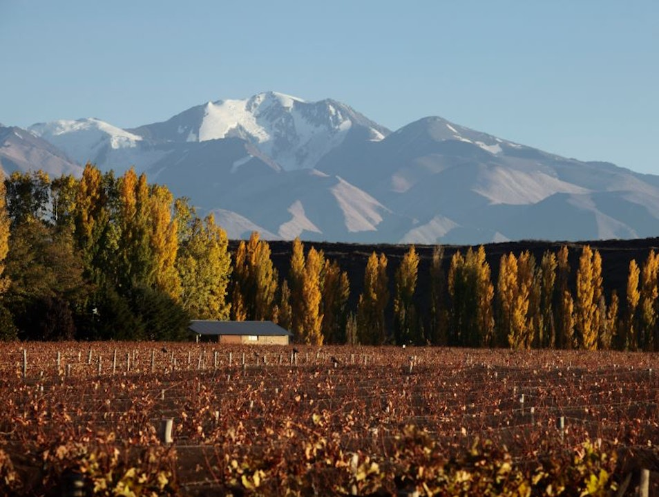 Adventures and Wine Mendoza  Argentina