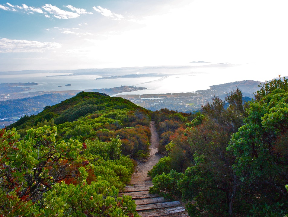 Hiking Mt. Tam leads to stunning views of SF Mill Valley California United States