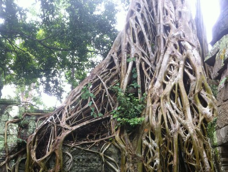 Touring the Wats (Temples) Siem Reap  Cambodia