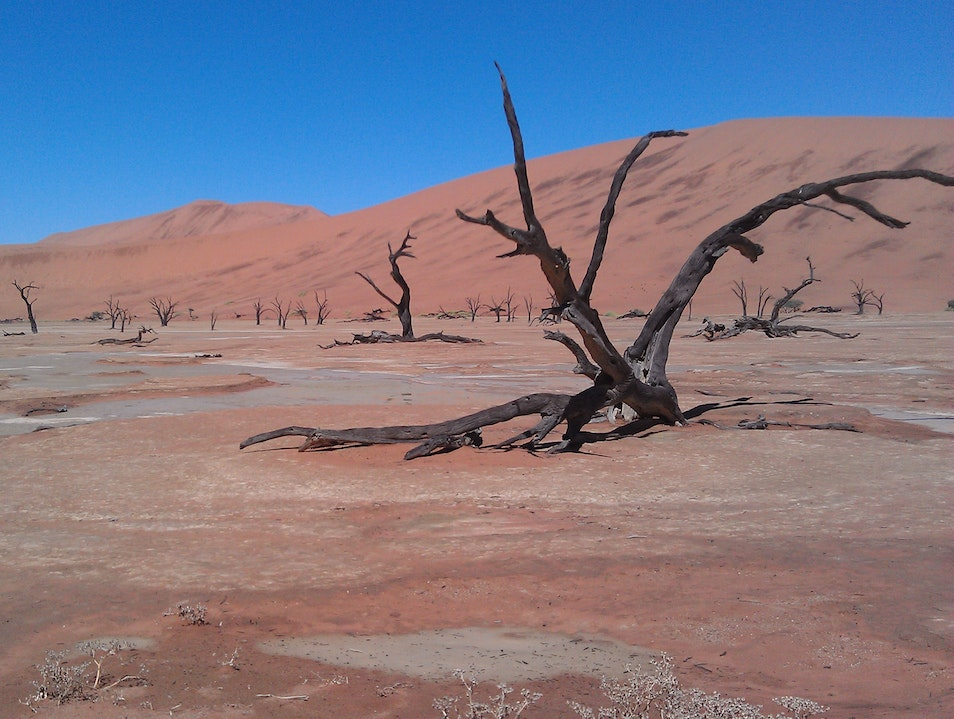 Insert yourself in a surrealist painting Sossusvlei  Namibia