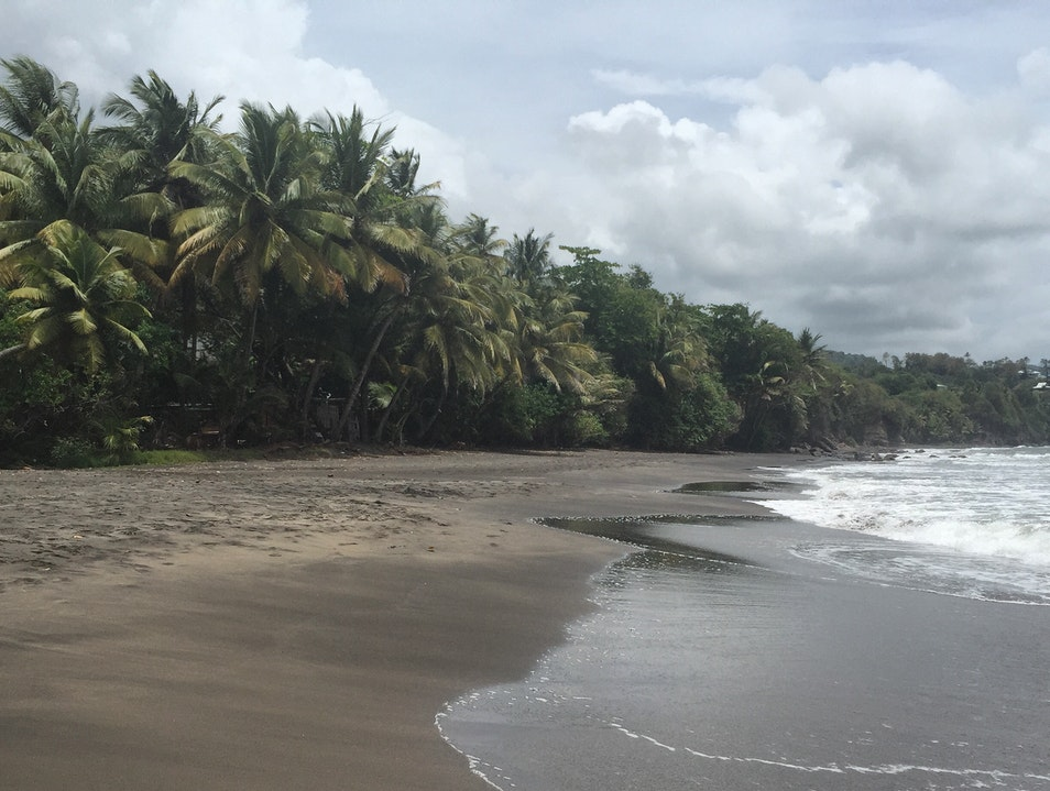 This Virtually Deserted Black Sand Beach on Basse-Terre's Southern Shore Is Worth Getting Lost to Find... Trois Rivières  Guadeloupe