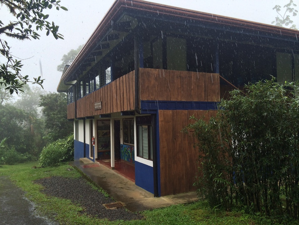 Monitoring Costa Rica's Wildlife in the Cloud Forest Region