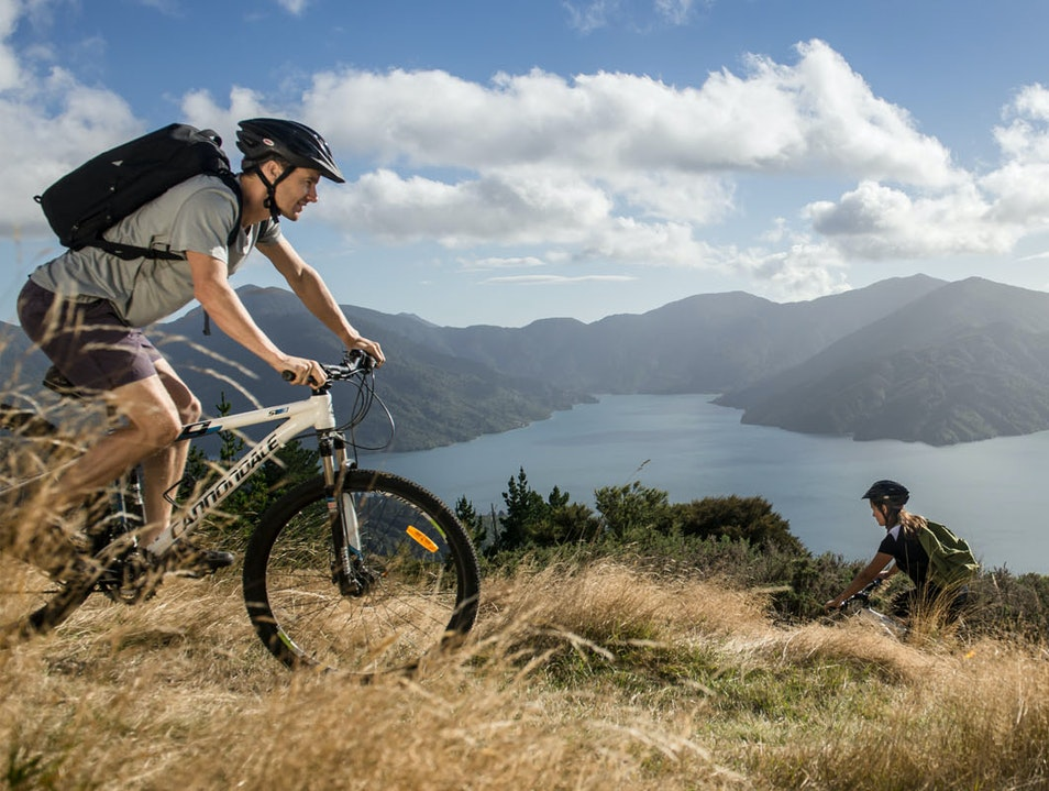 Exploring Queen Charlotte Sound The Pines  New Zealand