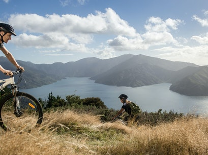 Exploring Queen Charlotte Sound Endeavour Inlet  New Zealand
