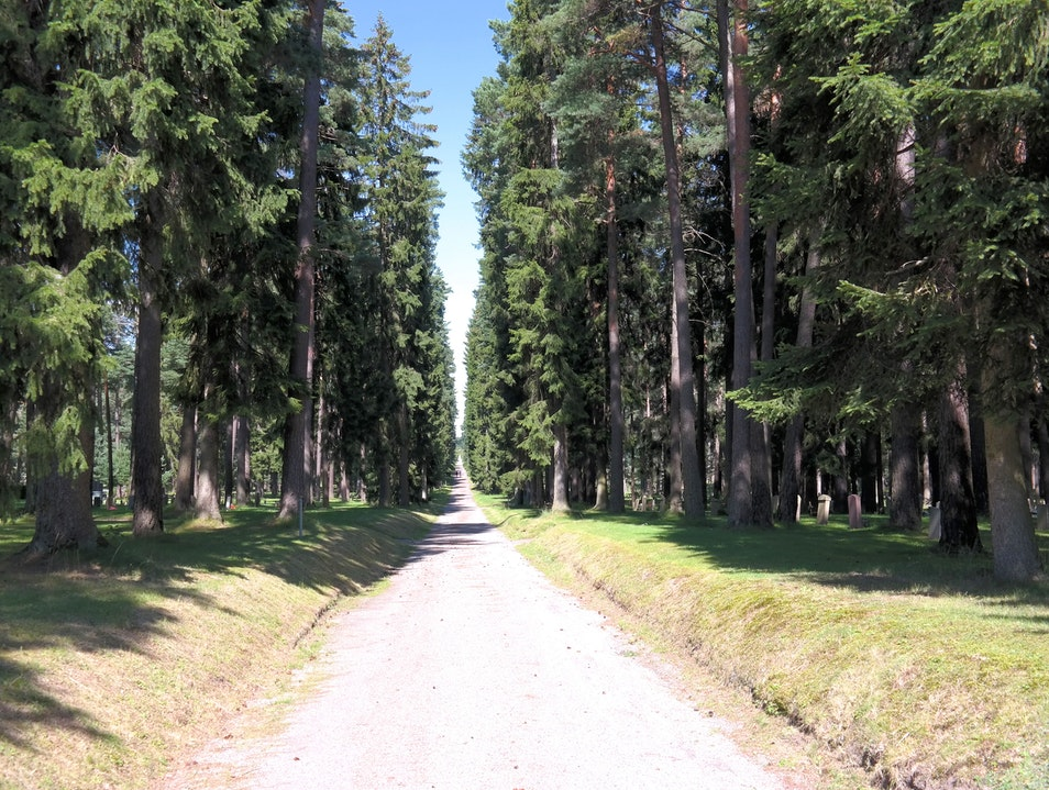 A Forested Final Stop