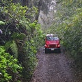 Nature Safaris 4x4 Tours Vaitape  French Polynesia