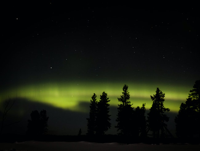 Aurora borealis (northern lights) in the Lapland Wilderness, northern Sweden