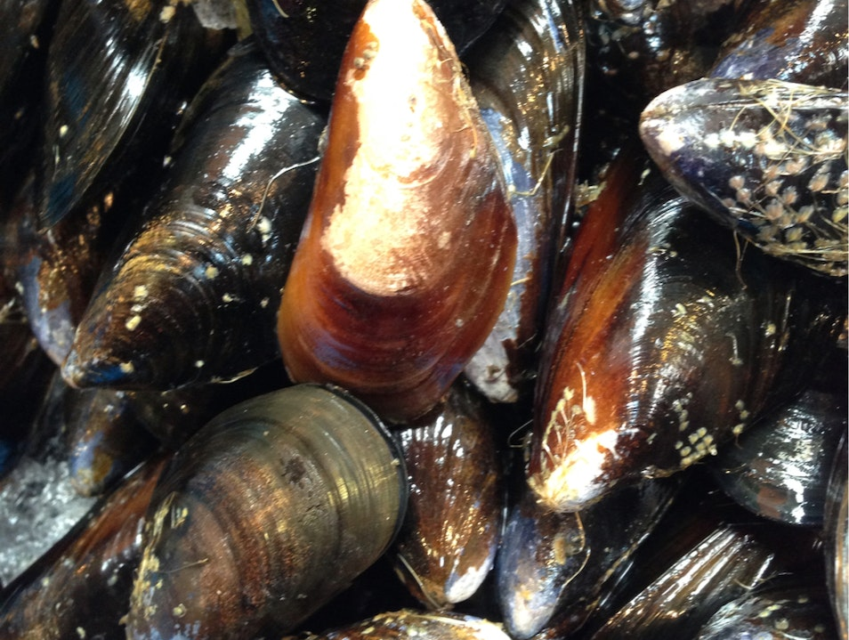 Mussels at Granville Public Market Vancouver  Canada
