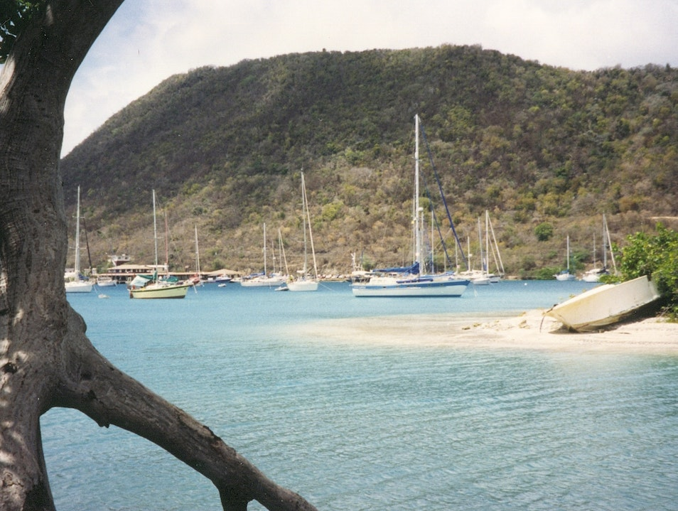 Beautiful, Serene Tortola in the British Virgin Islands Virgin Islands National Park  United States Virgin Islands
