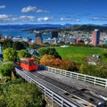 Original wellington.jpg?1482478966?ixlib=rails 0.3