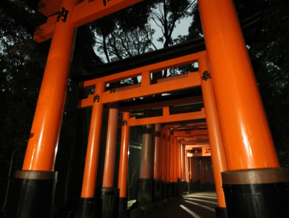 A magical walk through Japanese torii